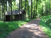 Forest paths without cars suitable for biking