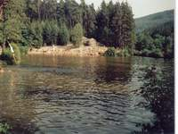 Forest outdoor swimming Kytlice